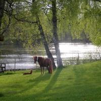 Snäcksjön ligger klar och blank nedanför huset. underbar att bada i, eller kanske bara vila på bryggan?